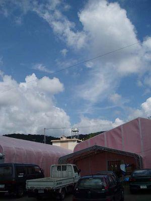 pinkdome01