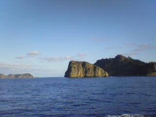 2011年も母島に